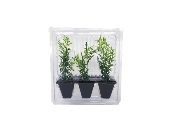 mail order plant packaging