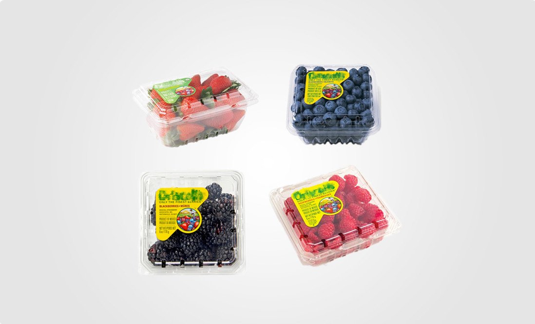 berries clamshell manufacturer-1